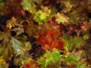 Autumn Collage #3