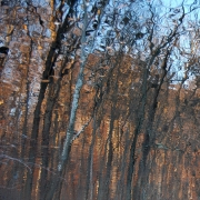 Refelections Again